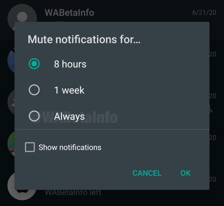 Well-known messaging application, WhatsApp, has now, delivered its much-anticipated feature for its clients, where one can mute someone's chat forever. WhatsApp's Always Mute option is presently accessible on both iOS and Android versions of the application.