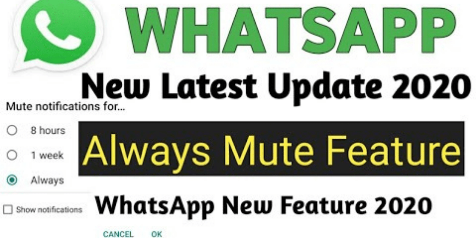How to Enable WhatsApp Always Mute option